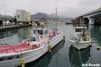 駿河湾奥の名産・桜海老で賑わいを見せる静岡県 由比(ゆい)漁港