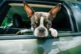なんか足クサい! そう思われないために… ドライブ中の足の臭い対策グッズ3選【トレンド女子ウォッチャー女子VOL.22】